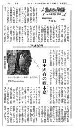 20130926聖教新聞アオゲラ