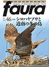 ファウラ46号 シロハヤブサと道南の冬の鳥